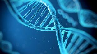 """""""CRISPR"""", e ardhmja e mjekësisë"""