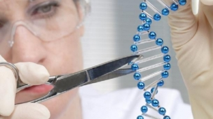 """Zbulohet """"CRISPR"""" apo """"gërshëra molekulare"""", e ardhmja e mjekësisë"""