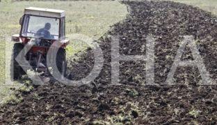 Ministria hap fondin 25 milionësh për subvencione në bujqësi e blegtori