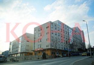 LDK-ja anashkalon çështjen e banesave - merret me subvencionet e Komunës