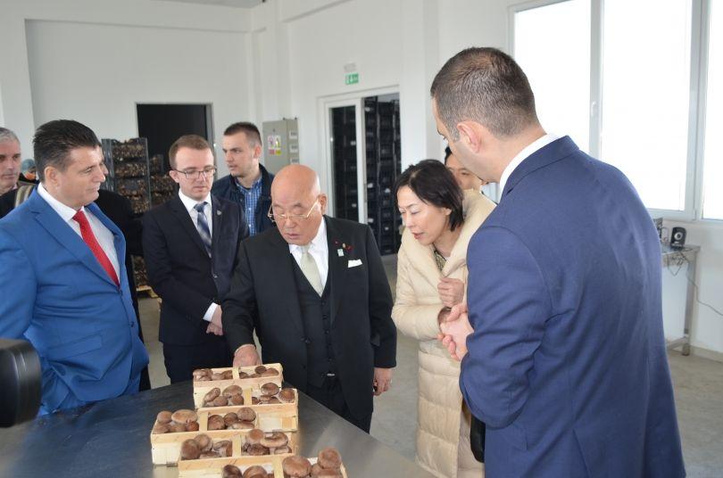 Konsulli i Nderit të Kosovës në Japoni vizitoi Mitrovicën, Bahtiri e çoi te fabrika e kërpudhave